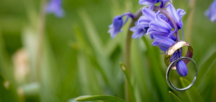 Wedding rings on Bluebells