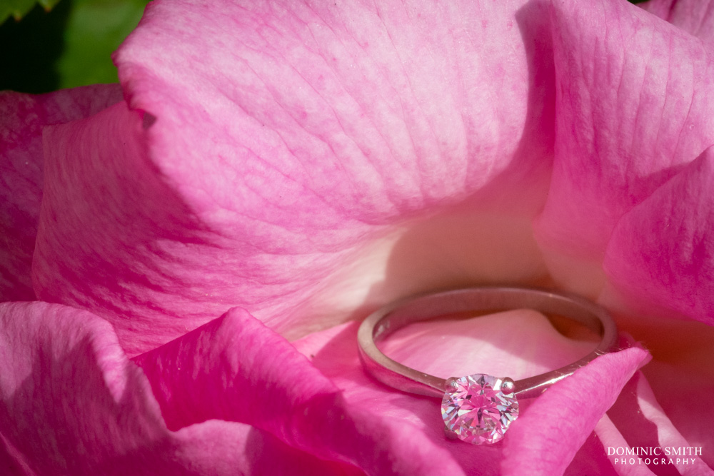 Engagement Ring at Smallfield Place